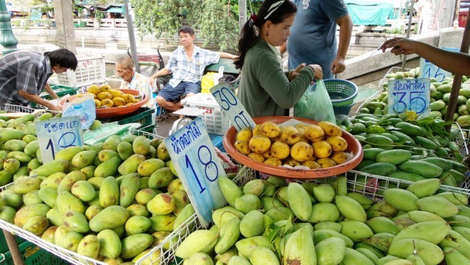 Fruit farmers coping with oversupply and price slumps